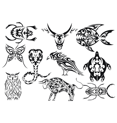 Posted by tattoo design at 5:29 AM. Labels: Spider Tattoos, Tribal Animal