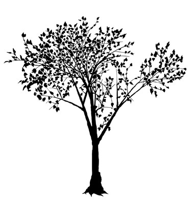 pine tree silhouette clip art. clipart tree silhouette. PINE