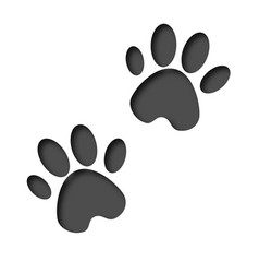 3d animals footprint footprint dog or cat in vector image