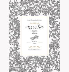 Argan tree argania spinosa background nuts vector