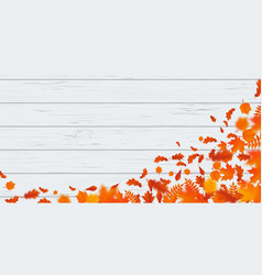 autumn leaf fall pattern autumanl falling leaves vector image