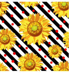 seamless with sunflower flowers on black vector image