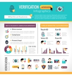 Verification Infographics Set vector