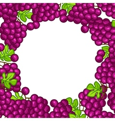 Background design with stylized fresh ripe grapes vector image vector image