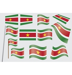 Suriname Flag vector image vector image