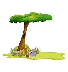 A gray cat under a tree with a hole vector