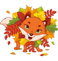 autumn fox vector image