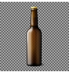 Blank transparent brown realistic beer bottle vector