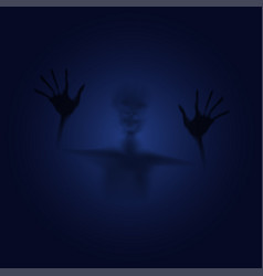 Shadow ghost in mirror vector