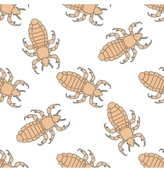 Seamless pattern with head human louse Pediculus vector image vector image
