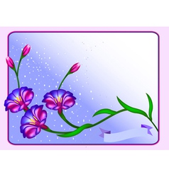 postcard background with flowers and vector image vector image