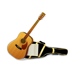 Acoustic guitars isolated on white background vector