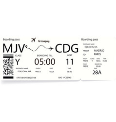 airline boarding pass tickets with shadow vector image