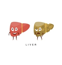 Healthy vs Unhealthy Liver Infographic vector