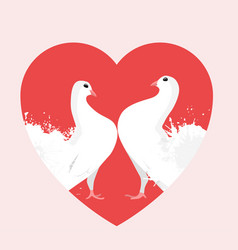 white doves in the heart vector image