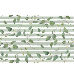 eucalyptus different tree foliage natural vector image