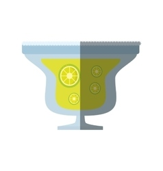 alcoholic cocktail popular bar lemon slice shadow vector image