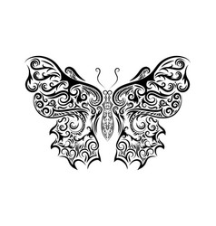 beautiful black and white butterfly isolated on vector image