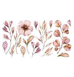 flowers anemone and leaves handpainted set vector image
