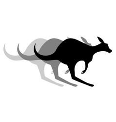 kangaroo effect vector image