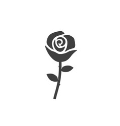 rose icon images on white background vector image