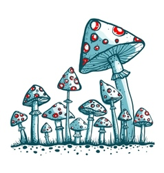 Spotted Toadstool Mushrooms vector image