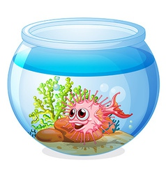 A fish inside the transparent aquarium vector image