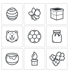 Apiary icons vector image
