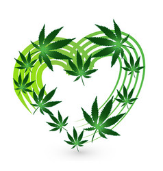 Heart shape with cannabis leafs icon design vector