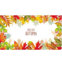 seasonal banner of autumnal leaves vector image vector image