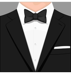 man in suit vector image