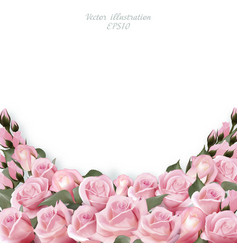 vintage greeting card with roses border vector image