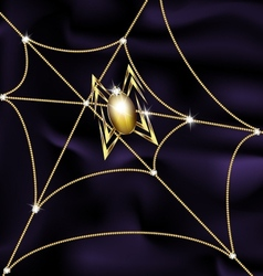 jewel spider and web vector image