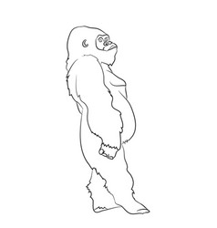 a gorilla drawing by lines vector image