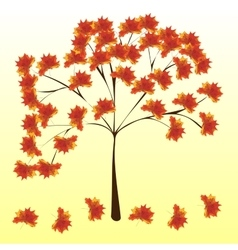 Autumn maple tree leaves nature background vector