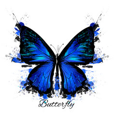 Detailed blue butterfly with spots vector