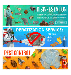 Disinfestation deratization insects pest control vector