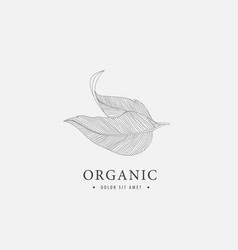leaves linear logo nature eco m organic vector image