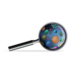 Magnifying glass with different types virus on vector