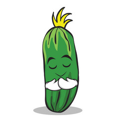 Praying face cucumber character cartoon collection vector