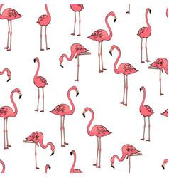 seamless background three pink flamingos on white vector image