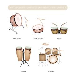 Set of Drum Instruments with Drumsticks vector