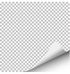 Sheet of paper with curled right corner vector