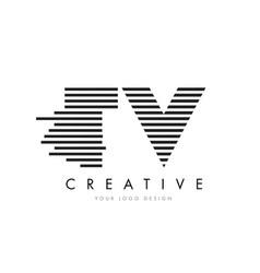 tv t v zebra letter logo design with black and vector image