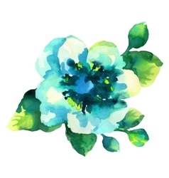 Watercolor of blue flower isolated vector image