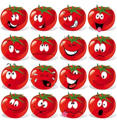 cartoon tomato vector image vector image
