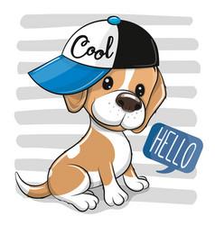 Artoon dog beagle in a cap on a on a striped vector