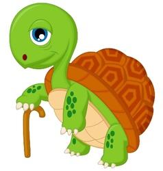 Cartoon elderly tortoise vector