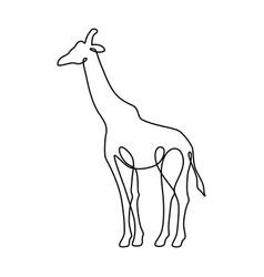Endless line art of giraffe vector