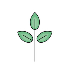 Natural plant with leaves design to ecology care vector